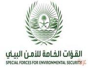"""الأمن البيئي"""" توضح عقوبة مخالفة نظام المراعي والغابات"""